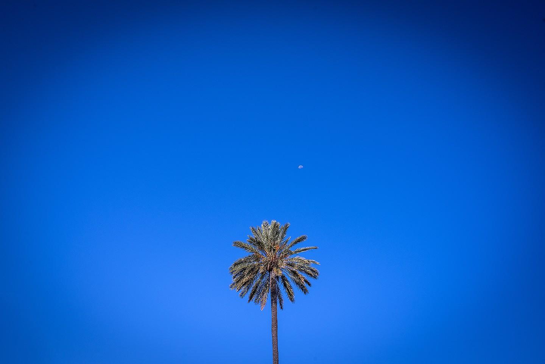 Jesús_Hernández_fotógrafo_bodas_Cádiz_Jerez_Sevilla- 02